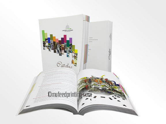 brochure designing services in dubai